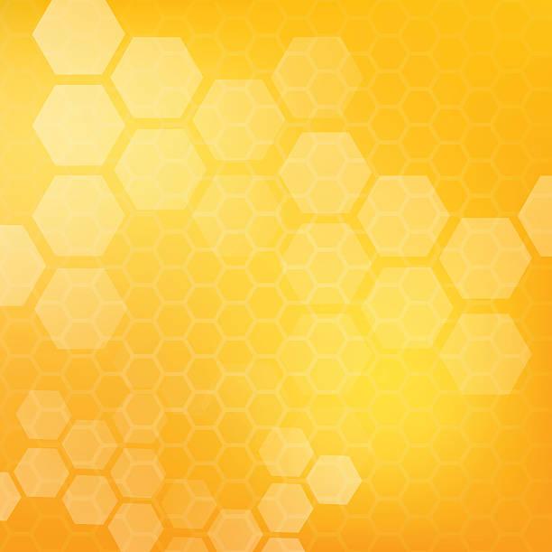 illustrazioni stock, clip art, cartoni animati e icone di tendenza di schema di illustrazione vettoriale miele - favo