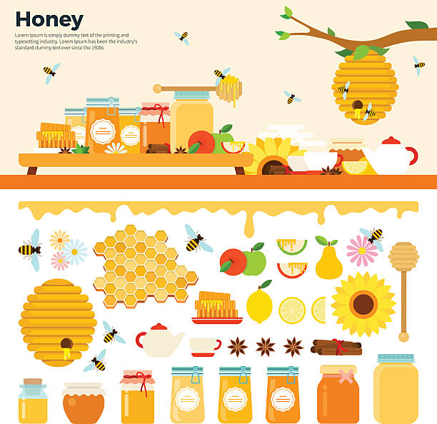Honey products on the table Honey products vector flat illustrations. Honey in jars and other honey products on the table. Organic and natural honey. Banks of honey, bees, honeycombs, bee hives, sunflower isolated on white background beehive stock illustrations