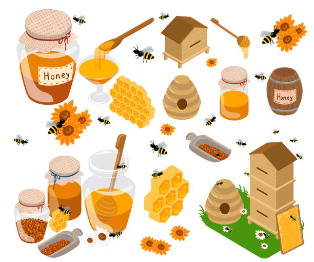 illustrazioni stock, clip art, cartoni animati e icone di tendenza di honey products vector flat illustrations. jars and other honey products on the table. organic and natural. banks, bees, honeycombs, bee hives, sunflower isolated on white - impollinazione