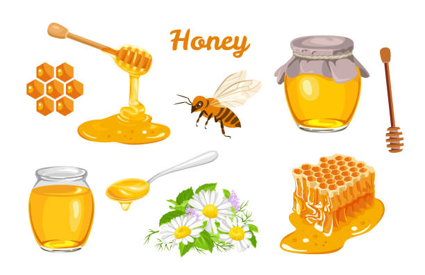 illustrazioni stock, clip art, cartoni animati e icone di tendenza di honey set. honeycombs, bee, honey in glass  jar, wooden honey dipper, honey in metal spoon and flowers isolated on white background. vector illustration of organic natural sweets in cartoon flat style - miele dolci
