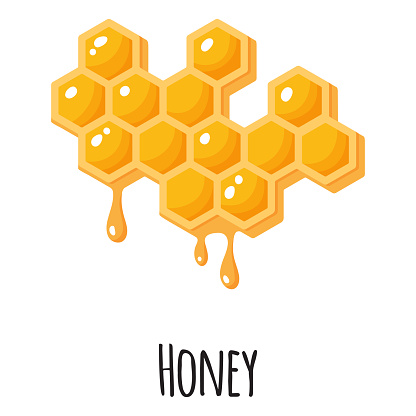 Honey superfood for template farmer market design, label and packing. Natural energy protein organic food.