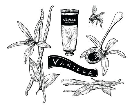 Honey Vanilla set