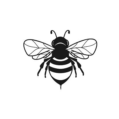 Honeybee abstract symbol in vector