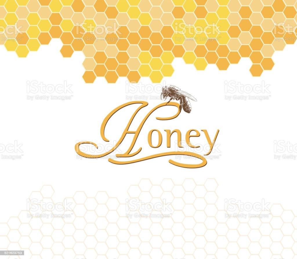 Honeybees on a comb vector art illustration