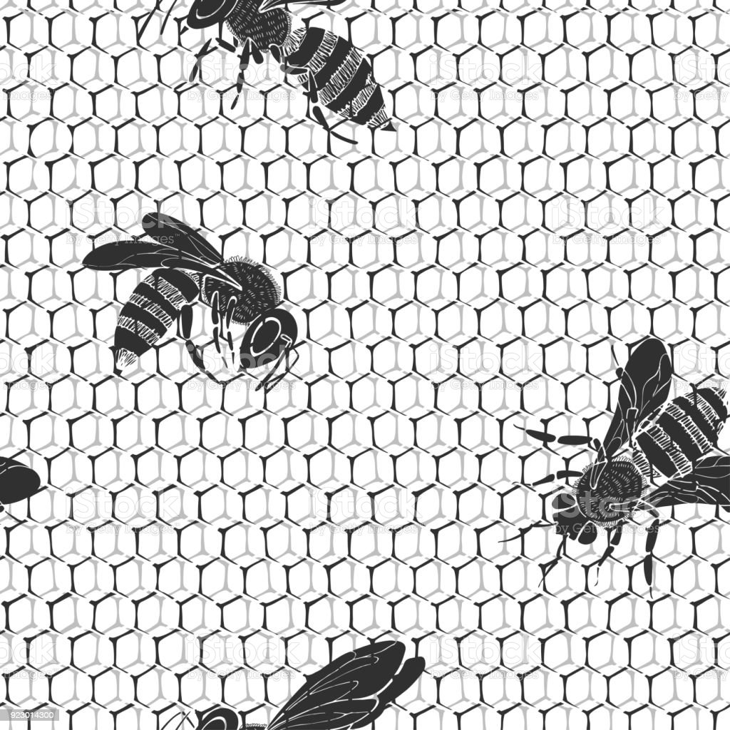 Honeycomb And Bees On A White Background Seamless Pattern