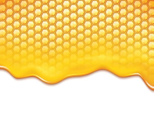 illustrazioni stock, clip art, cartoni animati e icone di tendenza di honeycomb and sweet honey drips - favo