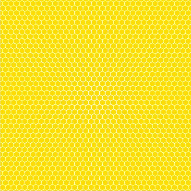 illustrazioni stock, clip art, cartoni animati e icone di tendenza di honeycomb hexagon pattern background vector illustration. - favo