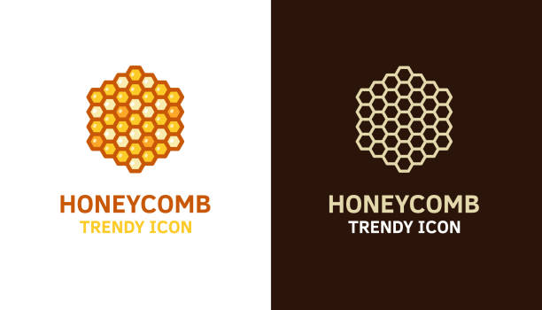 Honeycomb logo icon template for different uses. Vector thin line illustration of hexagonal-shaped beeswax cells for bees, food, honey related subjects Vector eps10 honeycomb animal creation stock illustrations