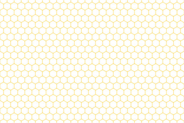Honeycomb seamless background. Vector illustration. Honeycomb seamless background. Vector illustration. beehive stock illustrations