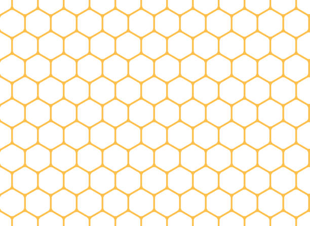 Honeycomb seamless background. Vector illustration. Honeycomb seamless background. Vector illustration. hexagon stock illustrations