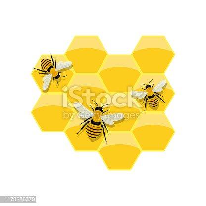 Beautiful vector design illustration of honeycomb isolated on white background