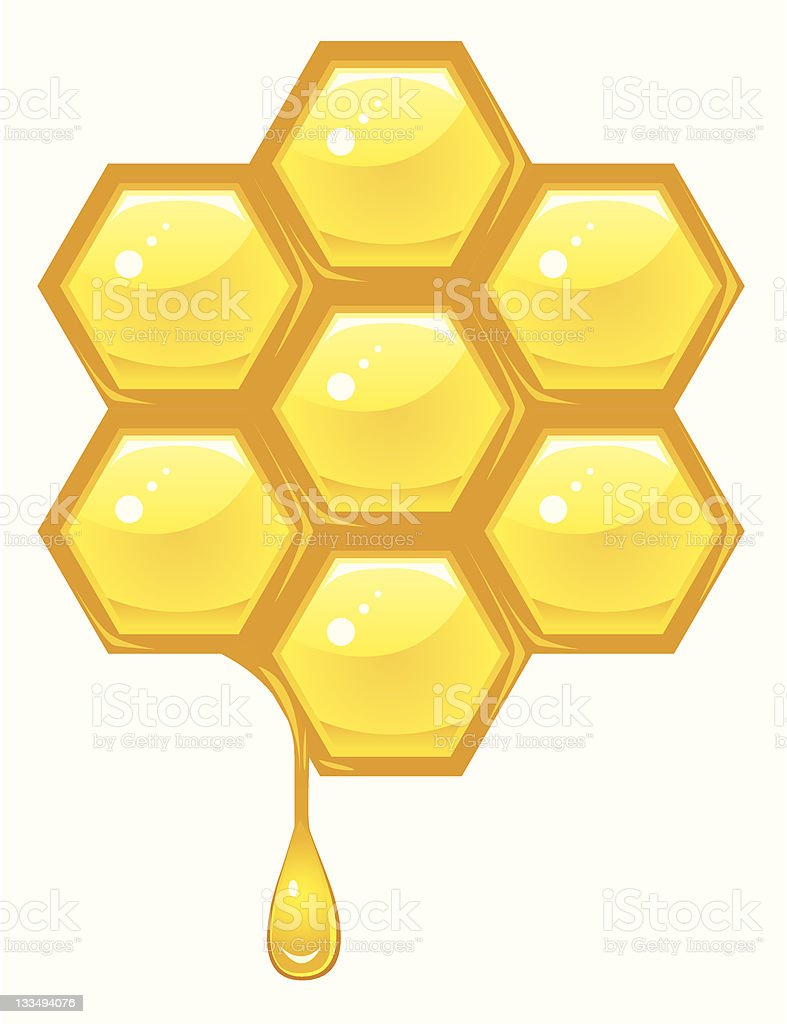 Honeycomb vector vector art illustration