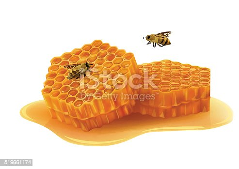 Honeycombs in the shape of hexagon, puddle of honey, flying bee, sitting bee. Vector illustration.