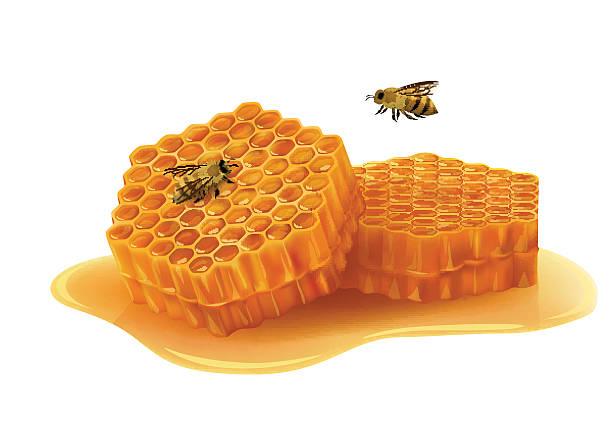illustrazioni stock, clip art, cartoni animati e icone di tendenza di a nido d'ape con api su sfondo bianco - favo