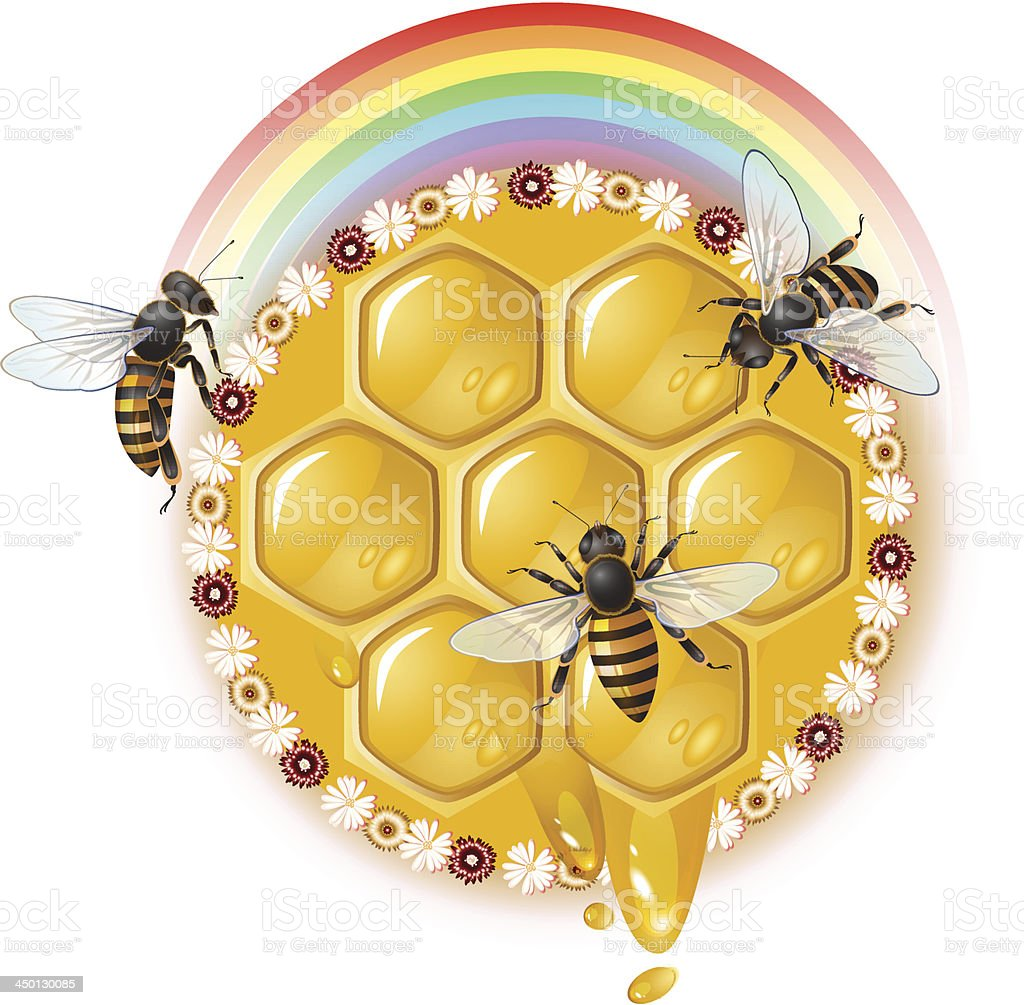 Honeycombs and bees royalty-free stock vector art