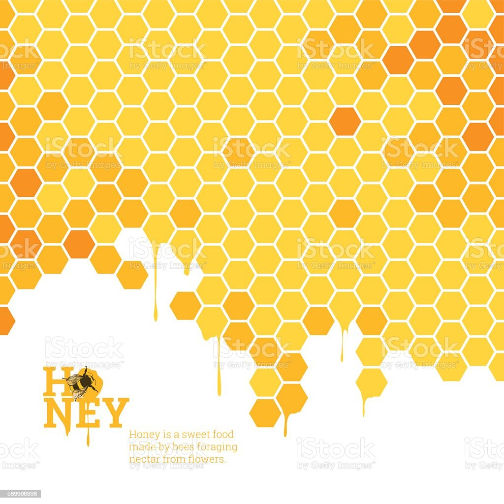 Honeycombs bright background vector art illustration