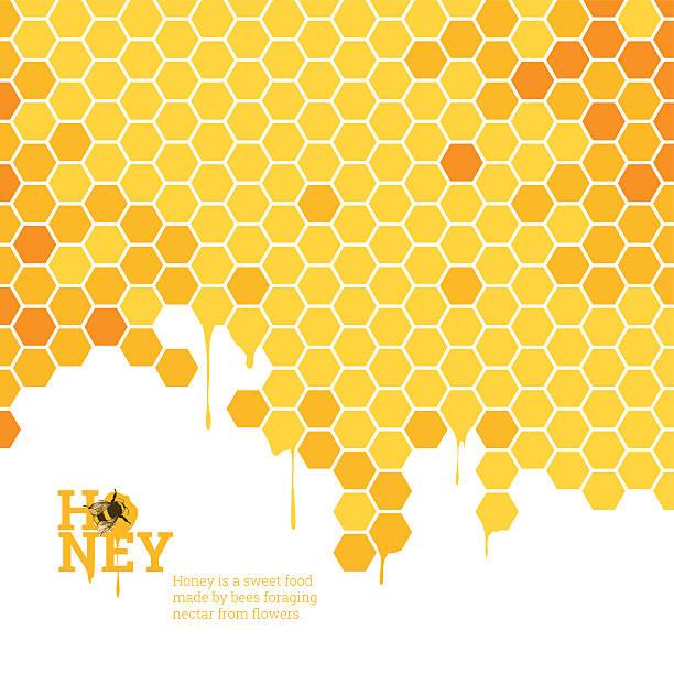illustrazioni stock, clip art, cartoni animati e icone di tendenza di honeycombs bright background - favo