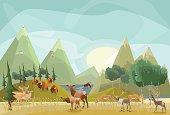 Hoofed Mammals of North America