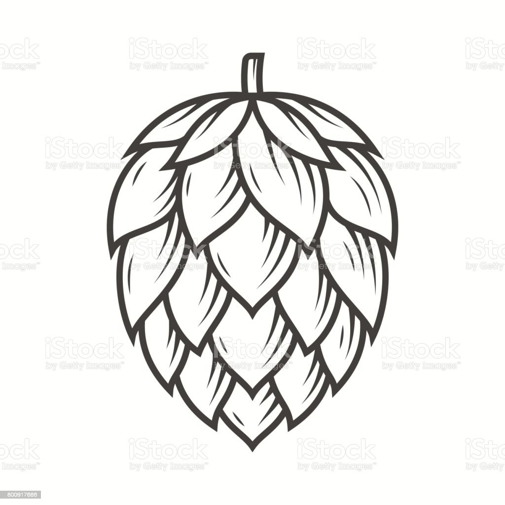 Hop emblem icon label. Vector illustration. - illustrazione arte vettoriale