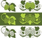 Hop plant design elements