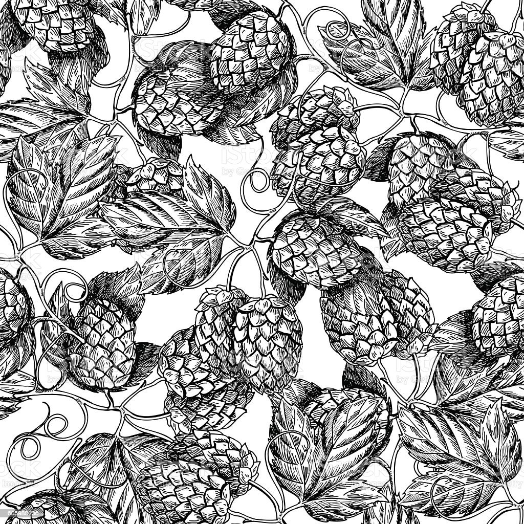 Hop vector seamless pattern.Black hand drawn artistic beer  hop vector art illustration