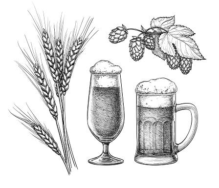 Hops Malt Beer Glass And Beer Mug — стоковая векторная графика и другие изображения на тему Алкоголь - напиток