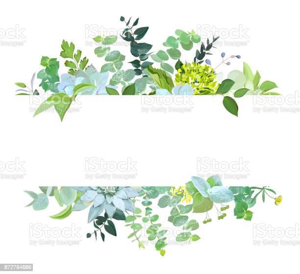 Horisontal botanical vector design banner vector id872764686?b=1&k=6&m=872764686&s=612x612&h=nlwh5rzrr0vsi68o pucocezsdls0uvuwai bdkjocm=