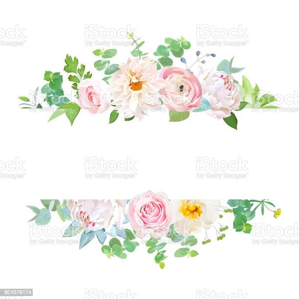Horisontal botanical vector design banner vector id924376174?b=1&k=6&m=924376174&s=612x612&h=wslql5yt8 xxsizpziclczao1eo0wl97ew9mdsdjx24=