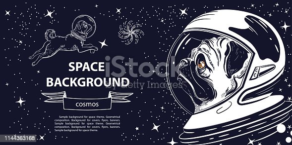Horizontal banner with an image of a pug in an astronaut's helmet. Portrait of a dog.
