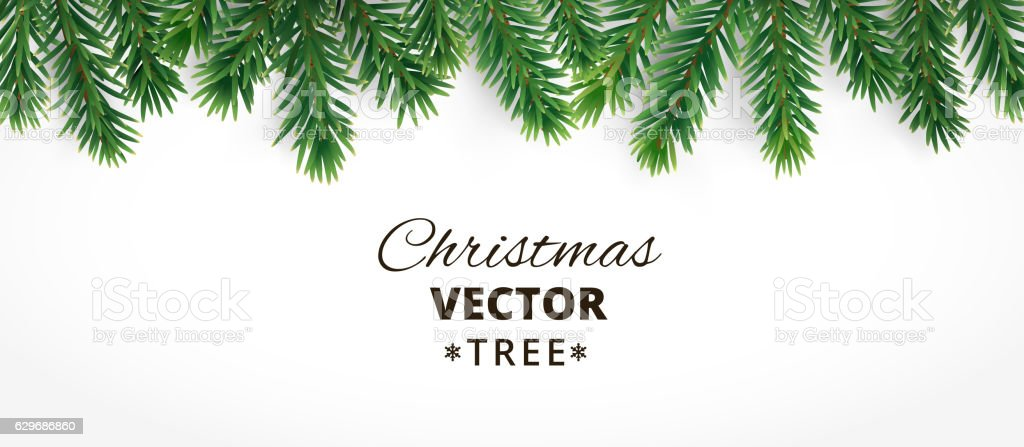 Horizontal banner with vector christmas tree branches and space vector art illustration
