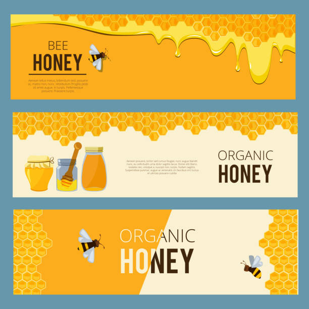 Horizontal banners with pictures set of apiary. Honey, waxing bee and beehive Horizontal banners with pictures set of apiary. Honey, waxing bee and beehive. Poster honey and apiary, beehive and dessert nutrition, vector illustration bee clipart stock illustrations