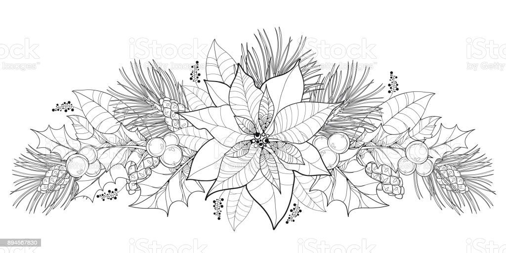 christmas holly border coloring pages - photo#35