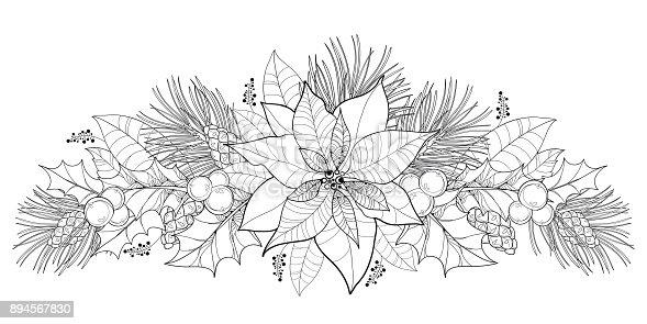 ᐈ Imagen De Borde Horizontal Con Poinsettia De Contorno