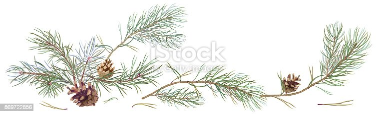 Flowering Tree Clip Art further Kiss  Christmas Tree Pine Conifer Cone Clip Art Pine Cone Ab B De additionally Creepy Tree Clipart Outline further Starburst Clip Art Outline Nce E Ta moreover Oak Tree Oak Tree In The Forest Coloring Page X. on clip art christmas tree outline