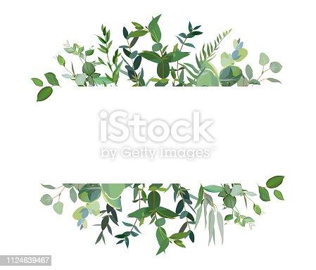 istock Horizontal botanical vector design banner. 1124639467