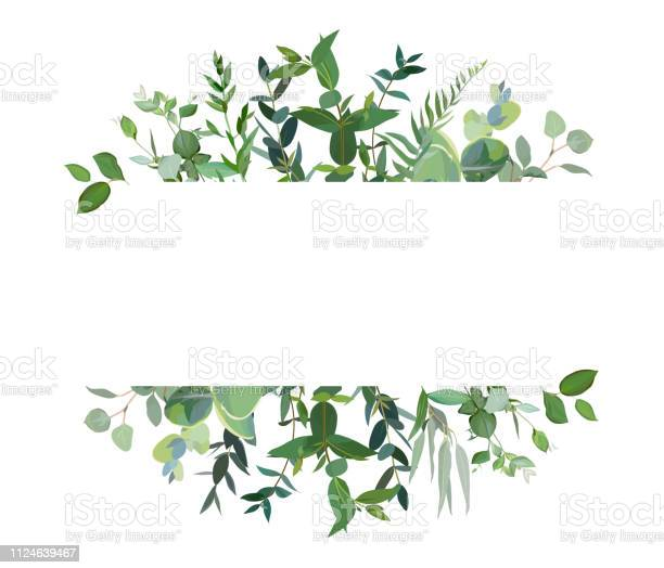 Horizontal botanical vector design banner vector id1124639467?b=1&k=6&m=1124639467&s=612x612&h=ku4pw0 hfotjwrxin1ikcivu8hlhb6rui8iyrx el1i=