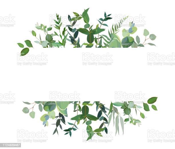 Horizontale Botanische Vector Ontwerp Banner Stockvectorkunst en meer beelden van Aquarel