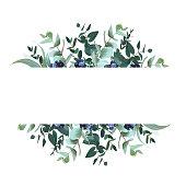 Horizontal botanical vector design banner.Parvifolia, true blue eucalyptus and black berry. Winter set. Hand drawn branches composition isolated on white background. All elements are editable