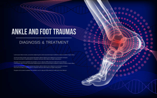 Horizontal dark blue banner for ankle and foot joints traumas Ankle sore joints concept. Realistic bones of foot skeleton of human leg. Horizontal dark blue banner for ankle and foot joints traumas advertising, medical publications. Vector illustration stock. medical x ray stock illustrations
