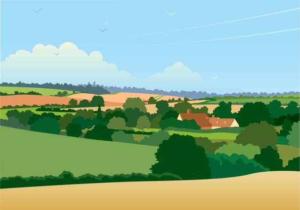 bildbanksillustrationer, clip art samt tecknat material och ikoner med horisontella engelska landskapet illustration - lantligt motiv