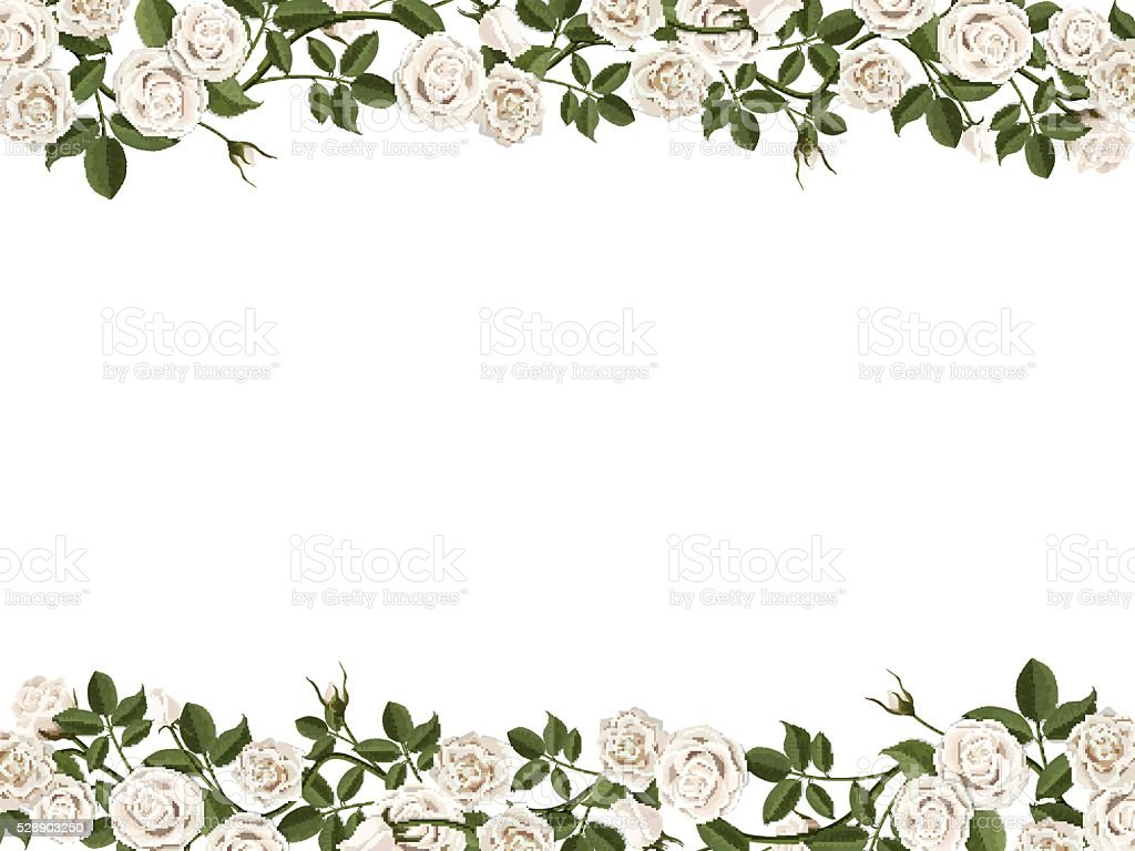 Horizontal Frame With White Roses Stock Vector Art & More Images of ...