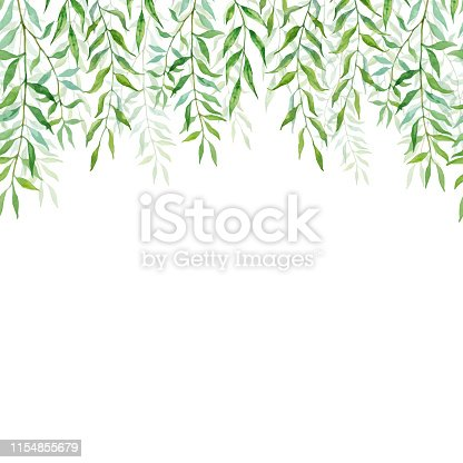Horizontal Seamless background with branches and leaves of willows. Hand-painted branches and leaves on white background. Natural leafy card design