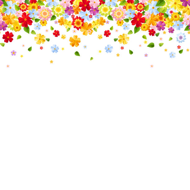 horizontal seamless background with colorful flowers. vector illustration. - floral frames stock illustrations, clip art, cartoons, & icons