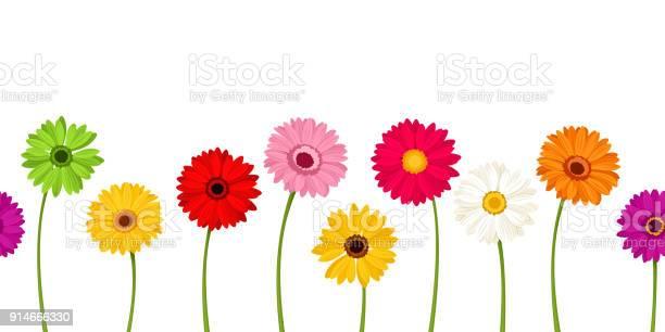 Horizontal seamless background with colorful gerbera flowers vector vector id914666330?b=1&k=6&m=914666330&s=612x612&h=u tn57tfz43rk89wf6bpo7trfyfztu9ctjio7av99ck=