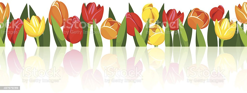 Horizontal seamless background with colorful tulips. Vector eps-10. vector art illustration