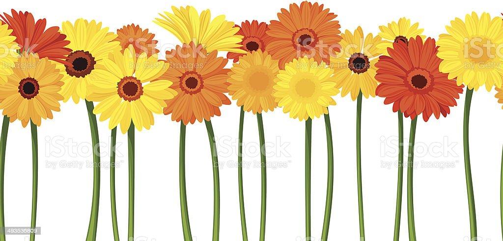 Horizontal seamless background with gerbera flowers. Vector illustration. vector art illustration
