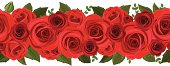 Horizontal seamless background with red roses. Vector illustration.