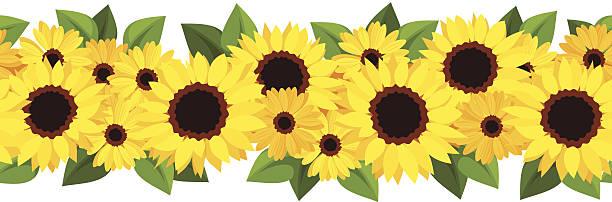Best Sunflower Garland Illustrations, Royalty-Free Vector ...