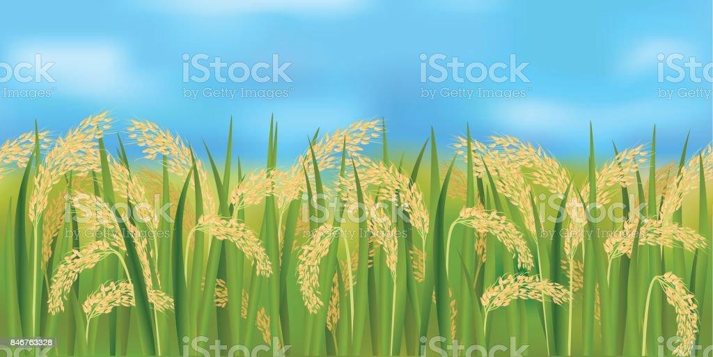 青い空に水平のシームレスな田んぼ まぶしいのベクターアート素材や