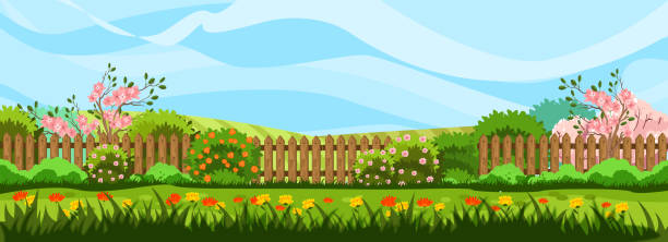 Horizontal spring landscape with garden, fence, trees in bloom, bushes and blue sky. Lawn with red and yellow flowers. Rural background in cartoon flat style with copy space. garden stock illustrations